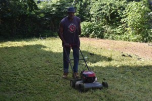 Mowing lots